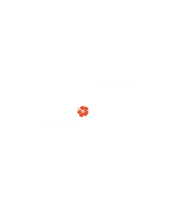 IBUSUKI CITY